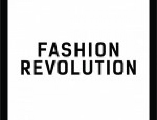 The end of Fashion Revolution Week 2018- What did we find out?